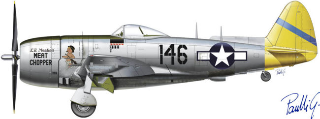 Image result for p-47 PROFILE
